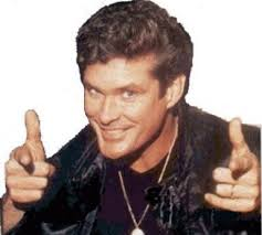 dont hassle the hoff