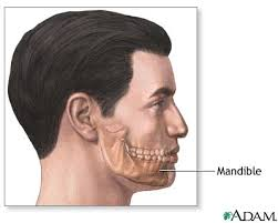 chin reconstruction