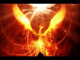 images of the phoenix bird