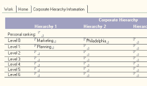 corporate hierarchies