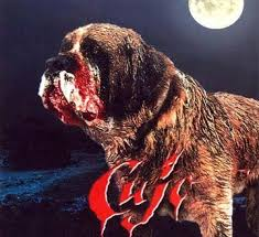 But it was Cujo that made a