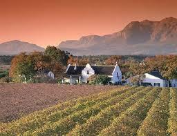 cape wine routes