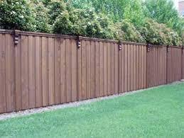 backyard privacy landscaping