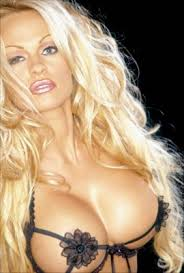 pamela anderson posters