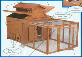 chickens coops