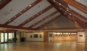 ceiling skylights
