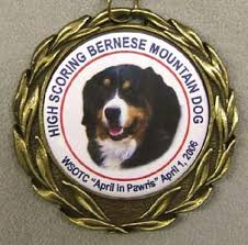 dog medal