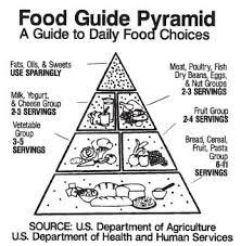 diagram of a food pyramid