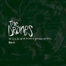 The Drones - The Best You Can Believe In