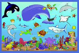 ocean animals pics