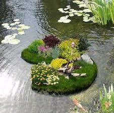 flower gardens photos