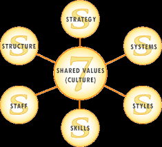 organization development models