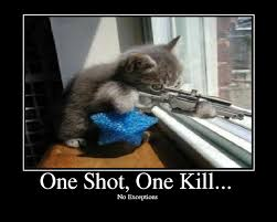 one kill one shot