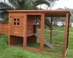guinea pig run