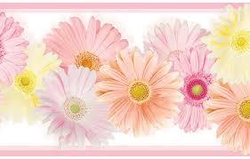 daisy borders