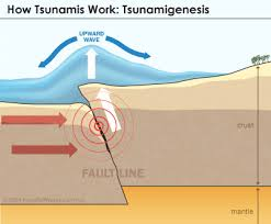information about tsunamis