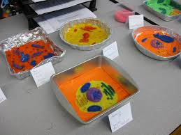 animal cell science projects