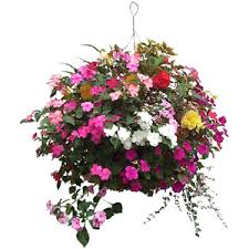 pictures of flower baskets