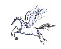 equine tattoos