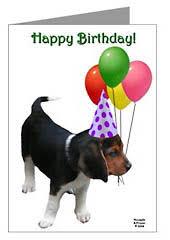 puppy happy birthday