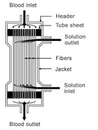 hollow fiber dialyzers
