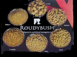 roudybush pellets