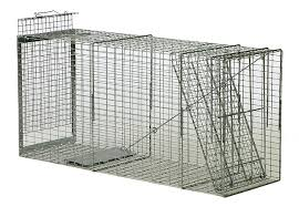 dog traps