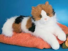cats stuffed animals