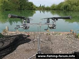 carp fishing photos