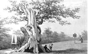 goffs oak
