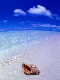 cook island beaches