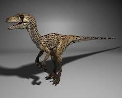dino raptors