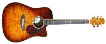 acoustic guitars takamine