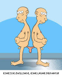 cartoon twins