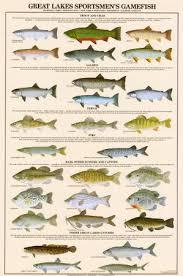 fish lakes