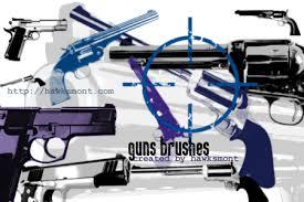 gun brush