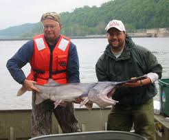 ohio river fish