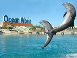 ocean world in dominican republic
