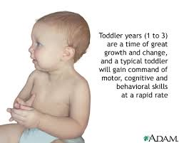 picture of a toddler