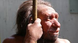 human neanderthal
