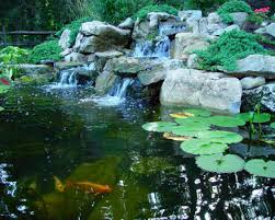 inground ponds
