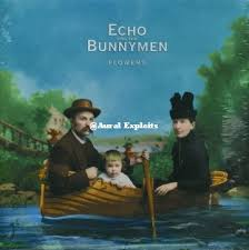 Echo & The Bunnymen - Flower