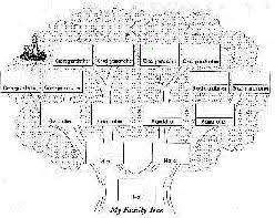 drawing of family tree