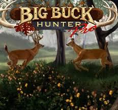 big buck hunting