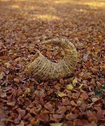 leaf sculptures
