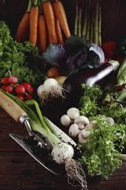 farming vegetables