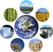 7 new wonder of the world