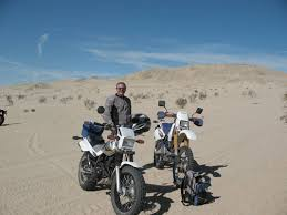 ocotillo desert