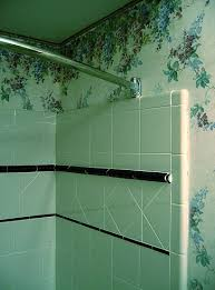 bathroom molds