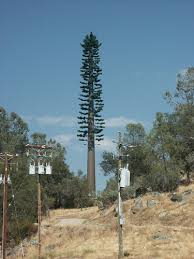 cell phone trees